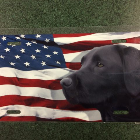 American Flag License Plate with Dog
